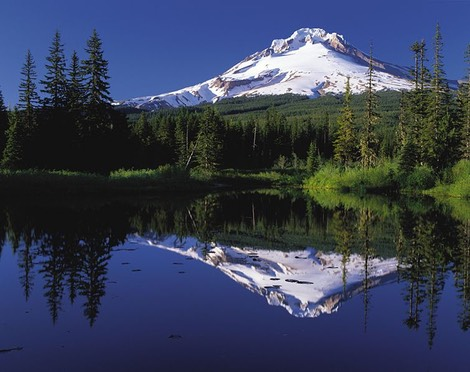 Mt. Hood, Oregon, from Trillium Lake